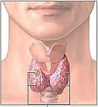 Parathyroid Scan